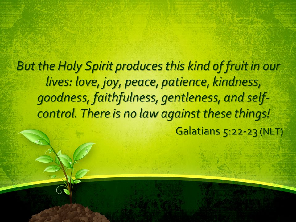 But the Holy Spirit produces this kind of fruit in our lives: love, joy, peace, patience, kindness, goodness, faithfulness, gentleness, and self-control. There is no law against these things!