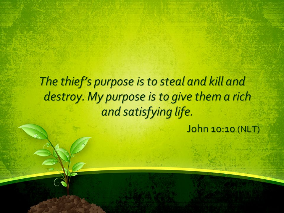 The thief's purpose is to steal and kill and destroy