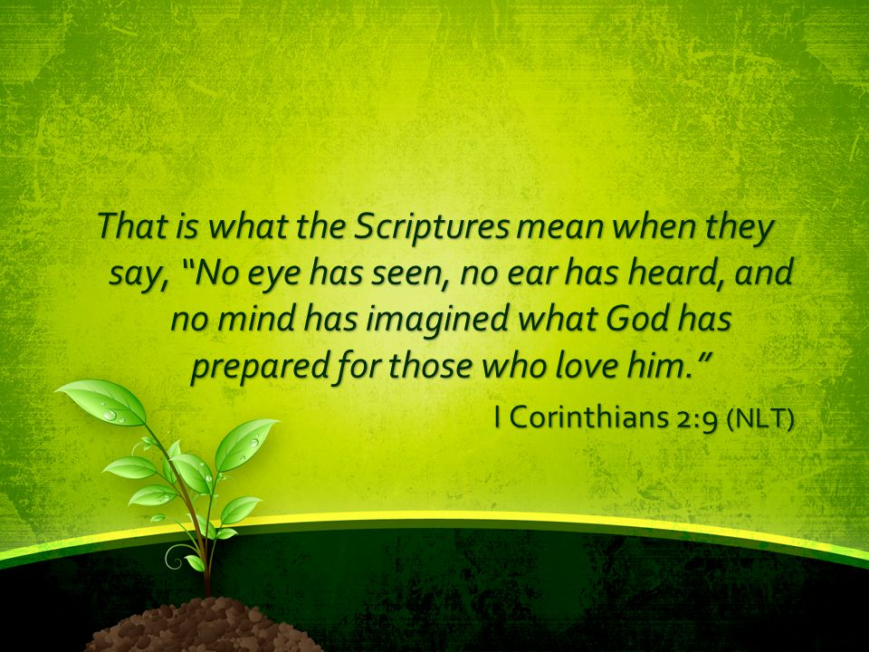 That is what the Scriptures mean when they say, No eye has seen, no ear has heard, and no mind has imagined what God has prepared for those who love him.