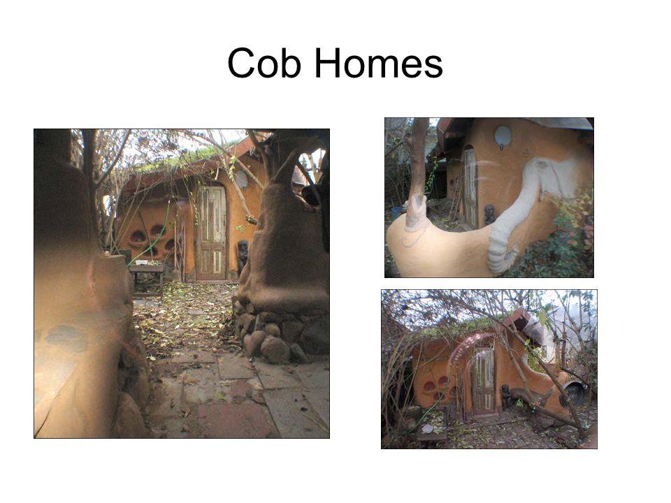 Cob Homes
