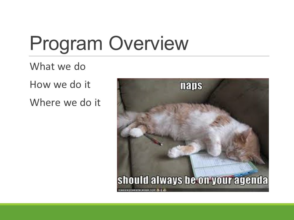Program Overview What we do How we do it Where we do it