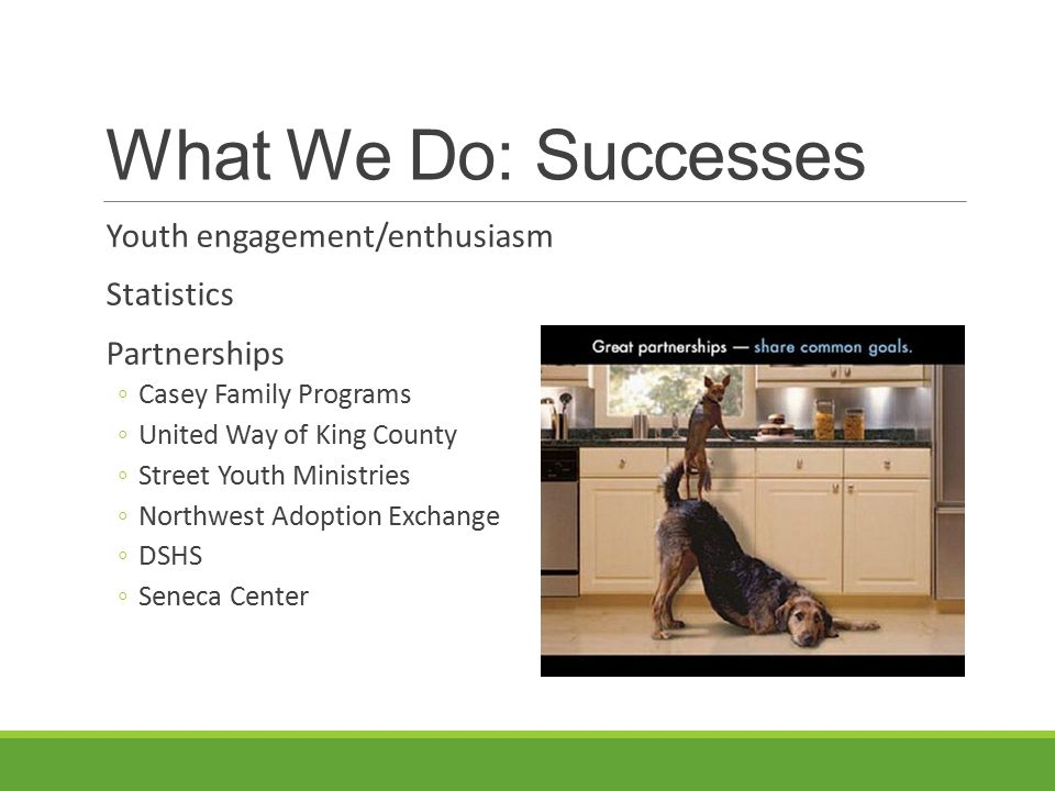 What We Do: Successes Youth engagement/enthusiasm Statistics
