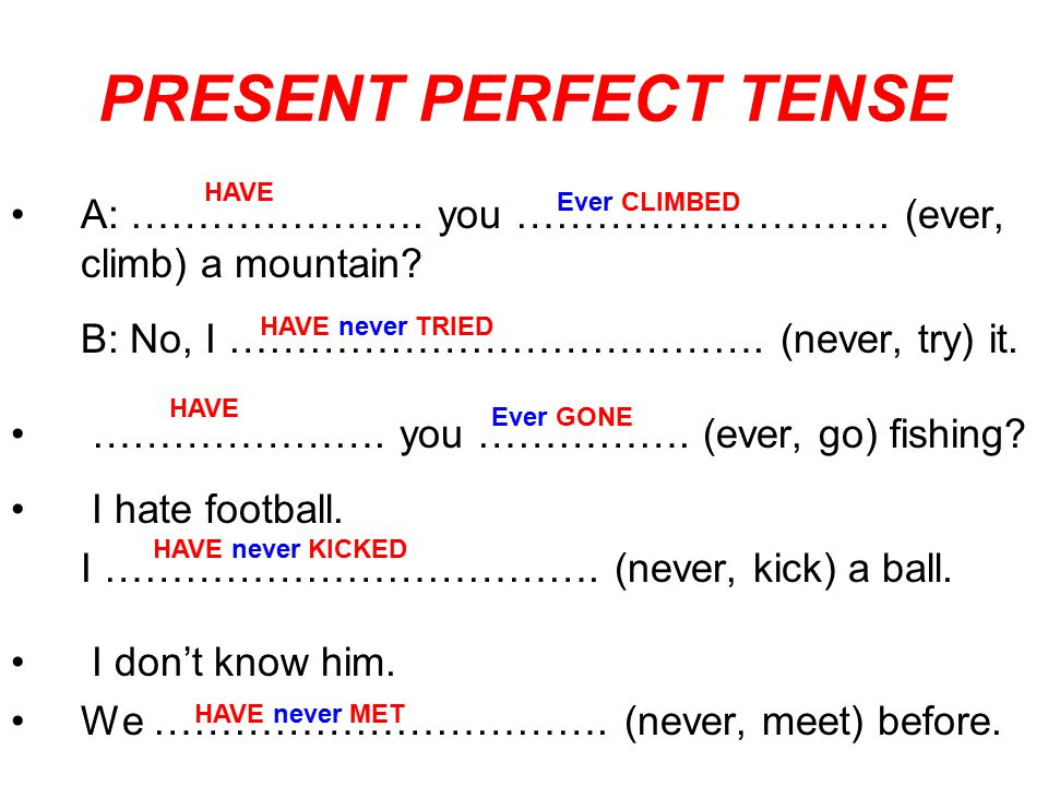 PRESENT PERFECT TENSE HAVE. A: …………………. you ………………………. (ever, climb) a mountain B: No, I …………………………………. (never, try) it.