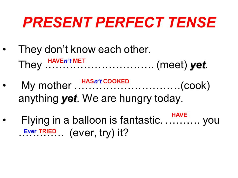 PRESENT PERFECT TENSE They don't know each other.