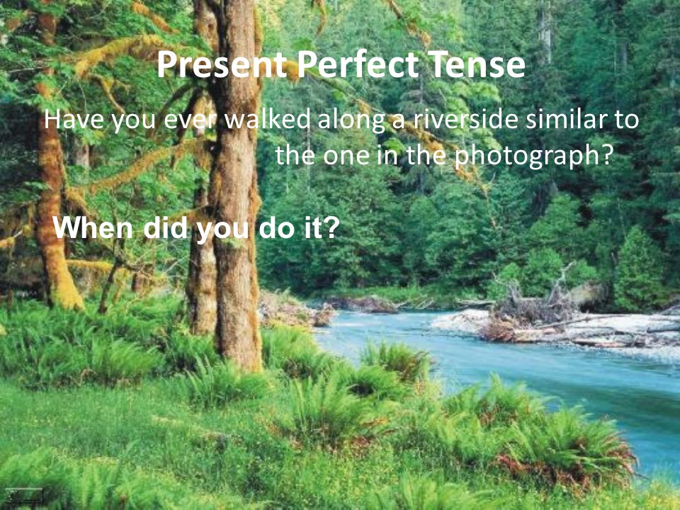 Present Perfect Tense Have you ever walked along a riverside similar to the one in the photograph.