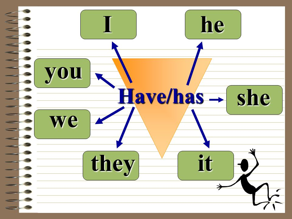 I he you Have/has she we they it