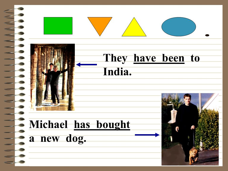 They have been to India. Michael has bought a new dog.