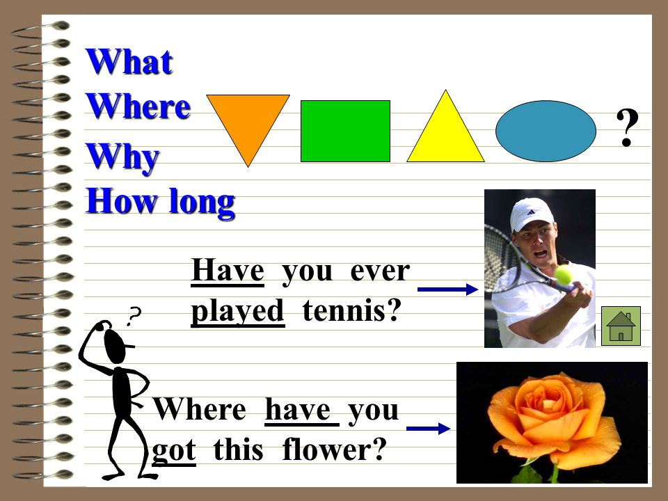 What Where Why How long Have you ever played tennis