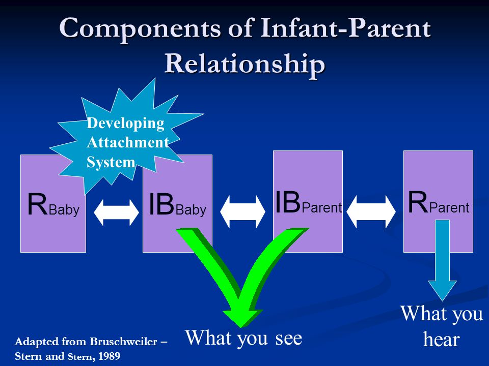 Components of Infant-Parent Relationship