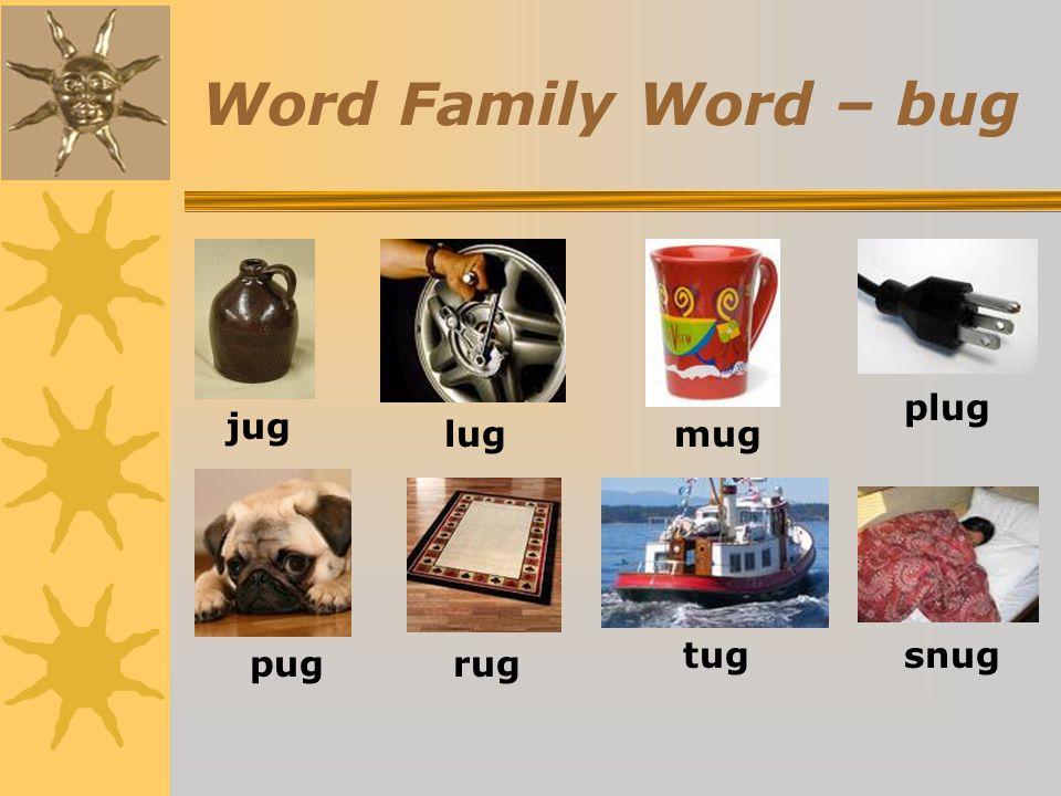 Word Family Word – bug plug jug lug mug tug snug pug rug
