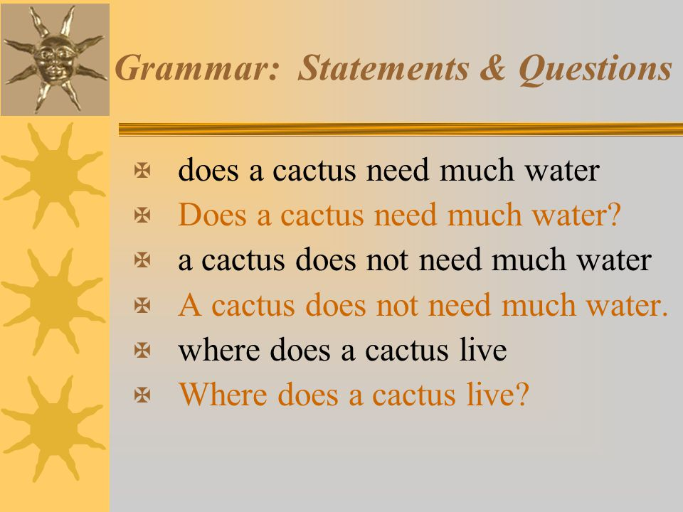 Grammar: Statements & Questions