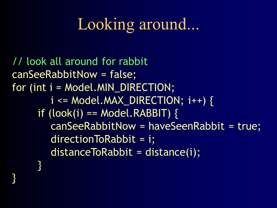 Looking around... // look all around for rabbit