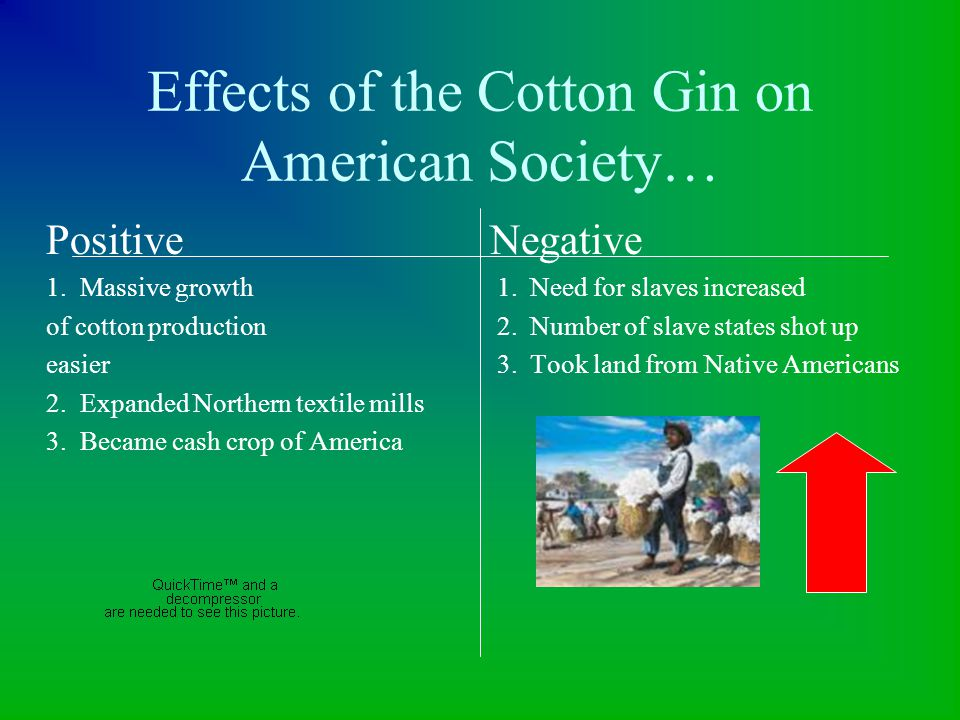 Effects of the Cotton Gin on American Society…