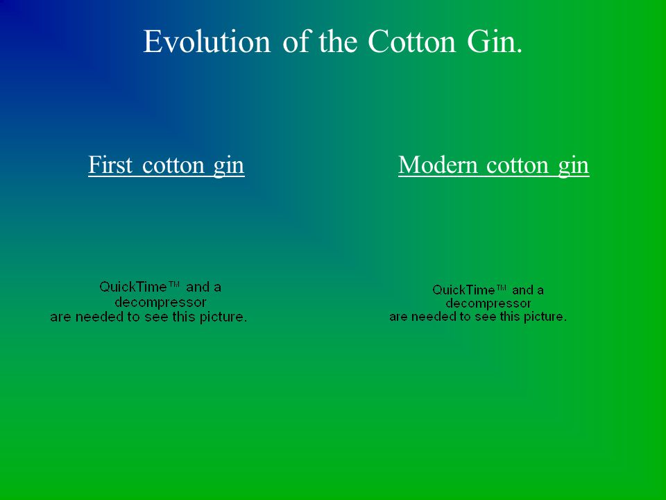 Evolution of the Cotton Gin.