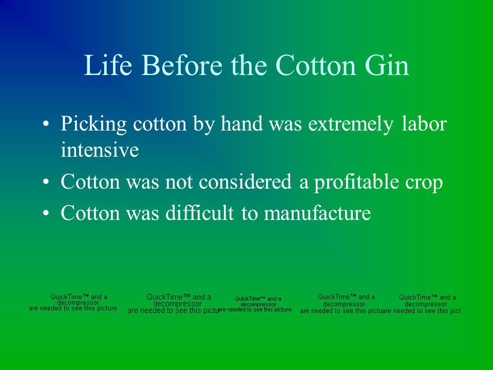 Life Before the Cotton Gin