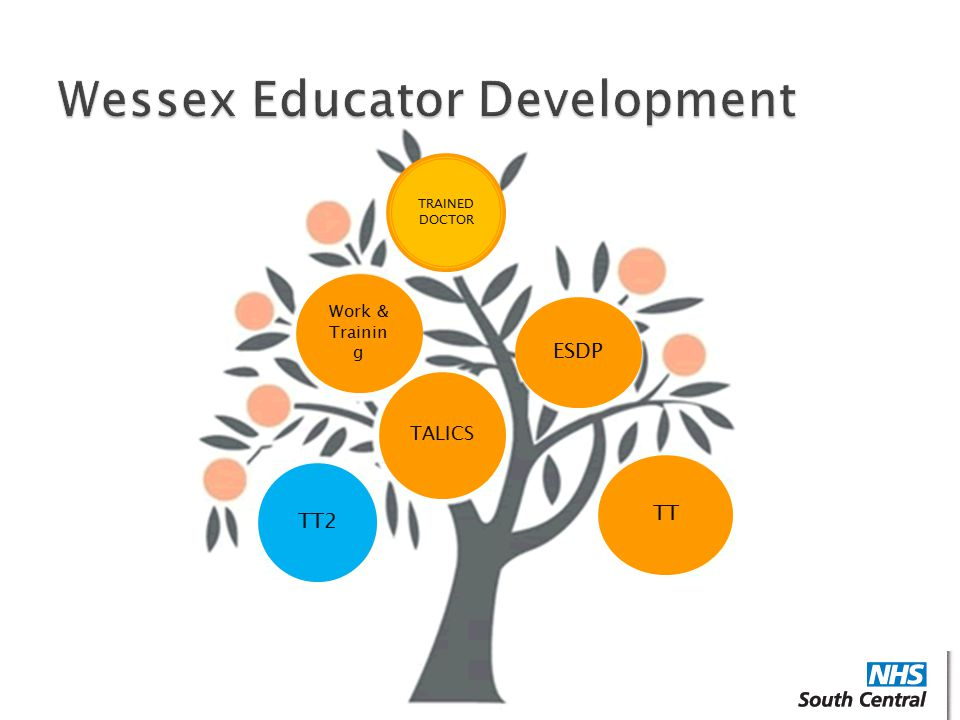 Wessex Educator Development