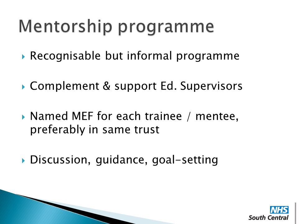 Mentorship programme Recognisable but informal programme