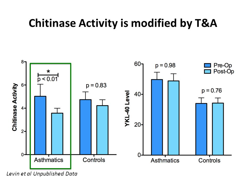Chitinase Activity is modified by T&A
