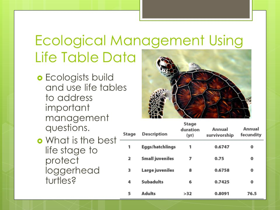 Ecological Management Using Life Table Data