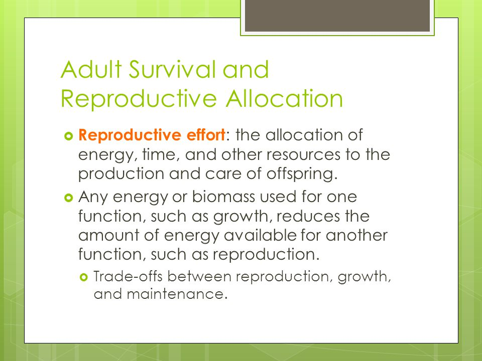 Adult Survival and Reproductive Allocation
