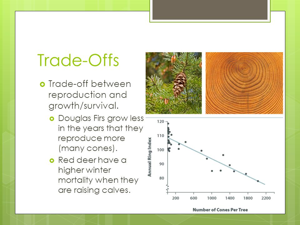 Trade-Offs Trade-off between reproduction and growth/survival.