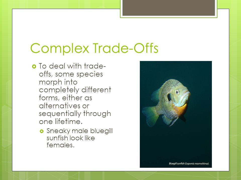 Complex Trade-Offs