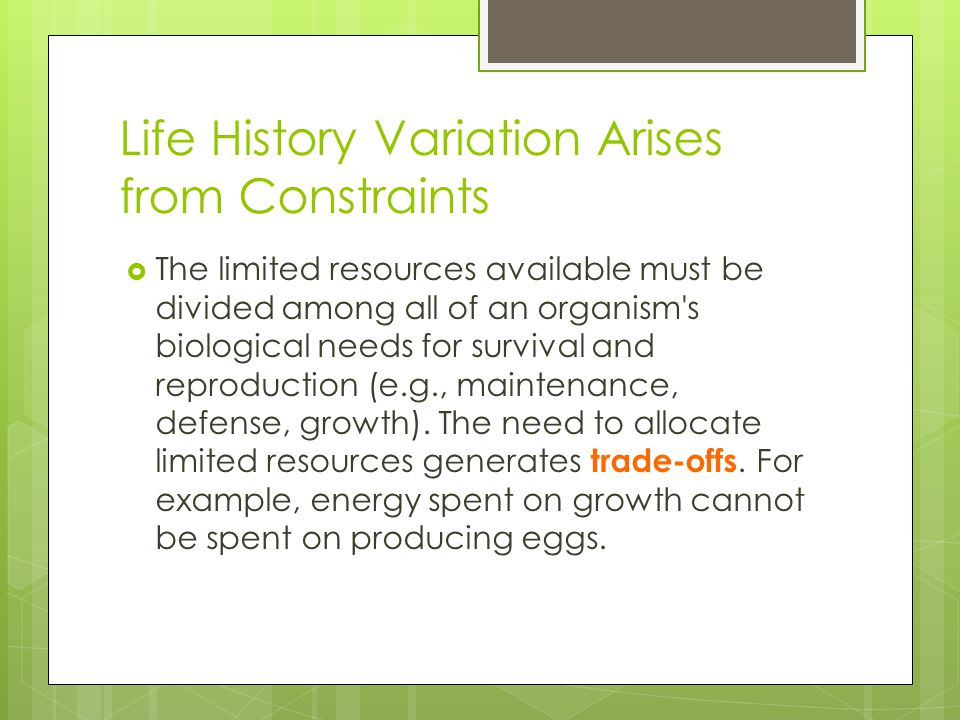Life History Variation Arises from Constraints