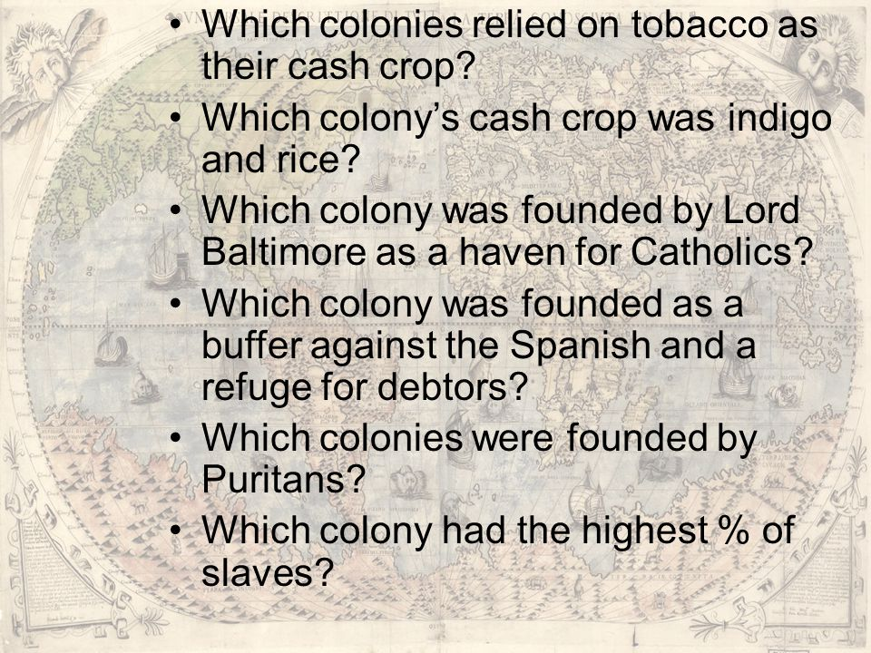 Which colonies relied on tobacco as their cash crop