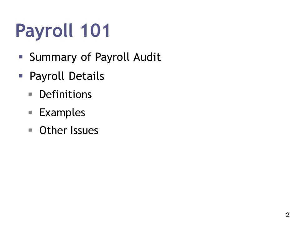 Payroll 101 Summary of Payroll Audit Payroll Details Definitions