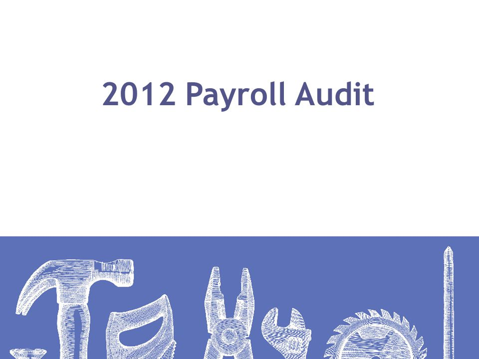 2012 Payroll Audit