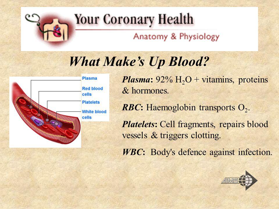 What Make's Up Blood Plasma: 92% H2O + vitamins, proteins & hormones.