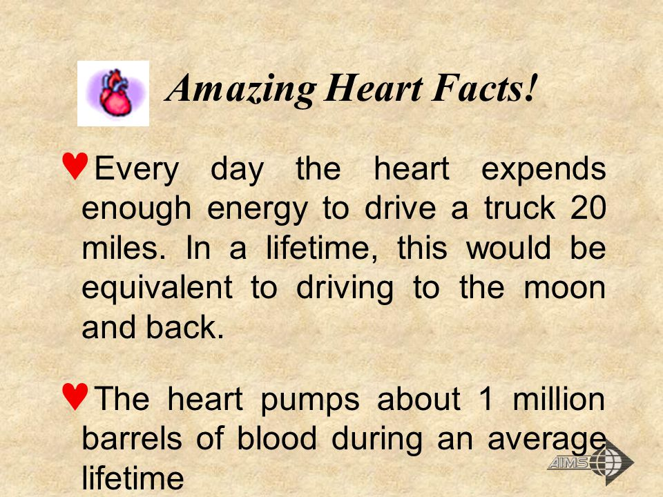 Amazing Heart Facts!