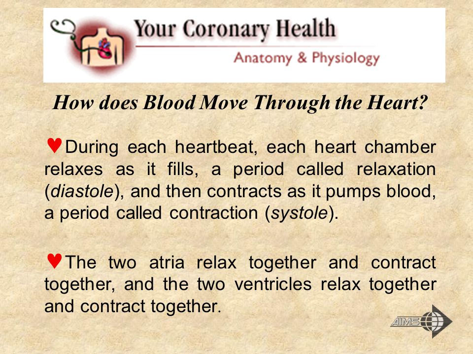How does Blood Move Through the Heart