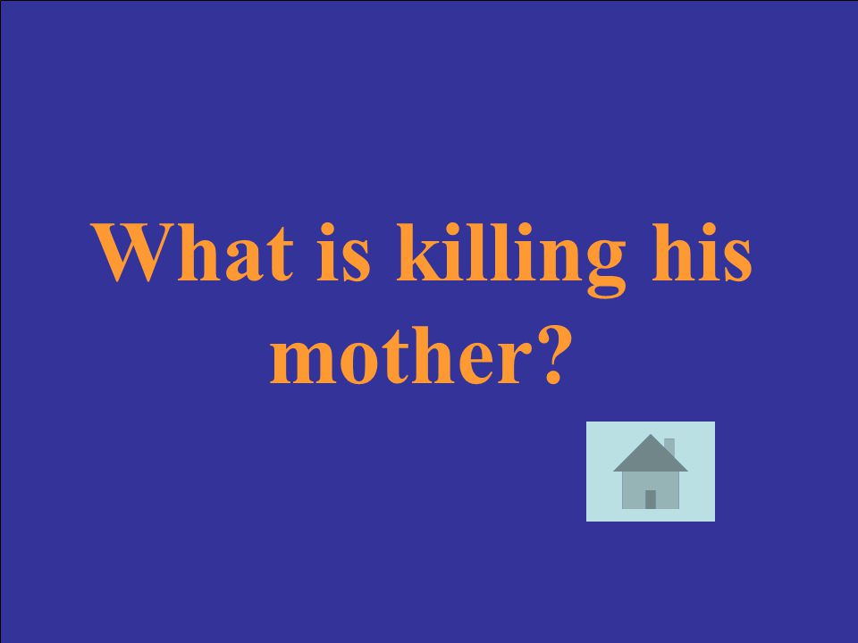 What is killing his mother