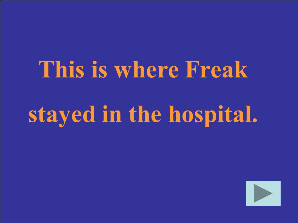 This is where Freak stayed in the hospital.