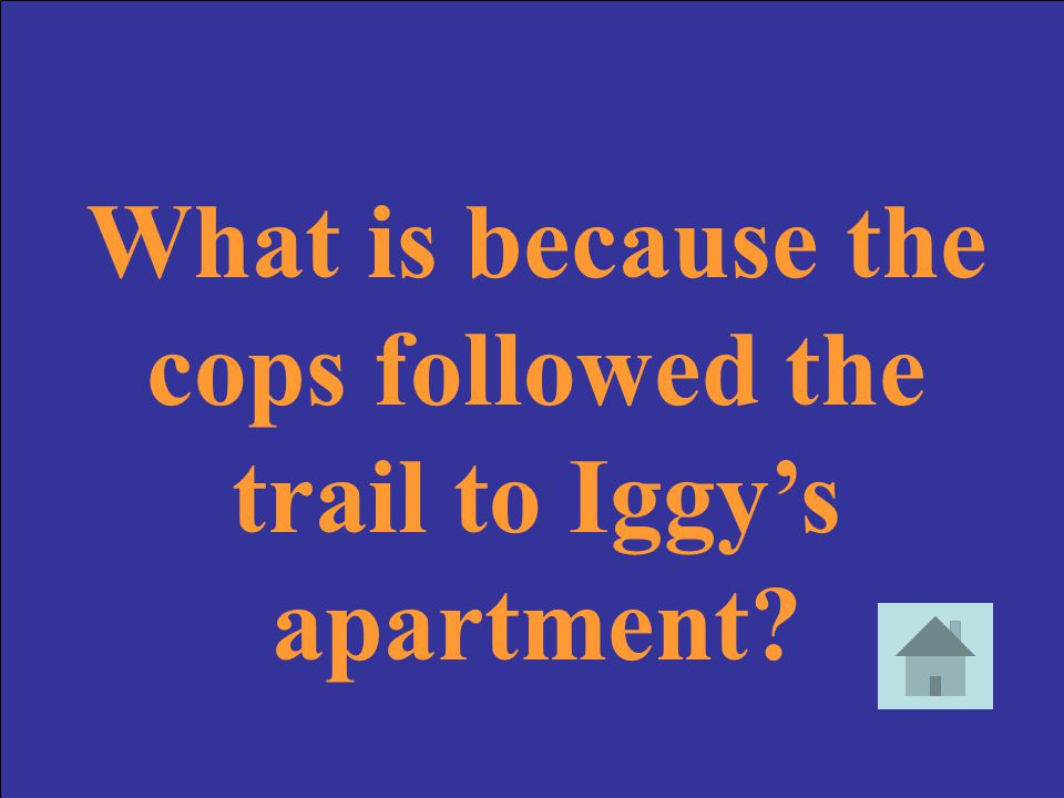 What is because the cops followed the trail to Iggy's apartment