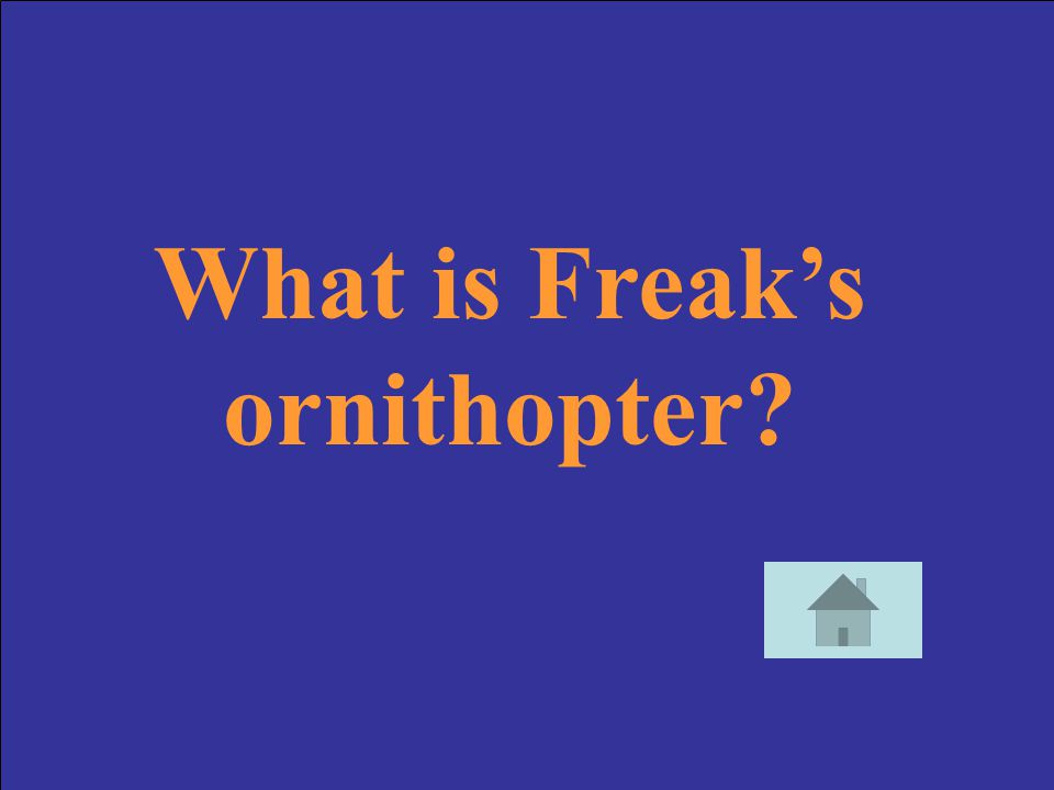 What is Freak's ornithopter