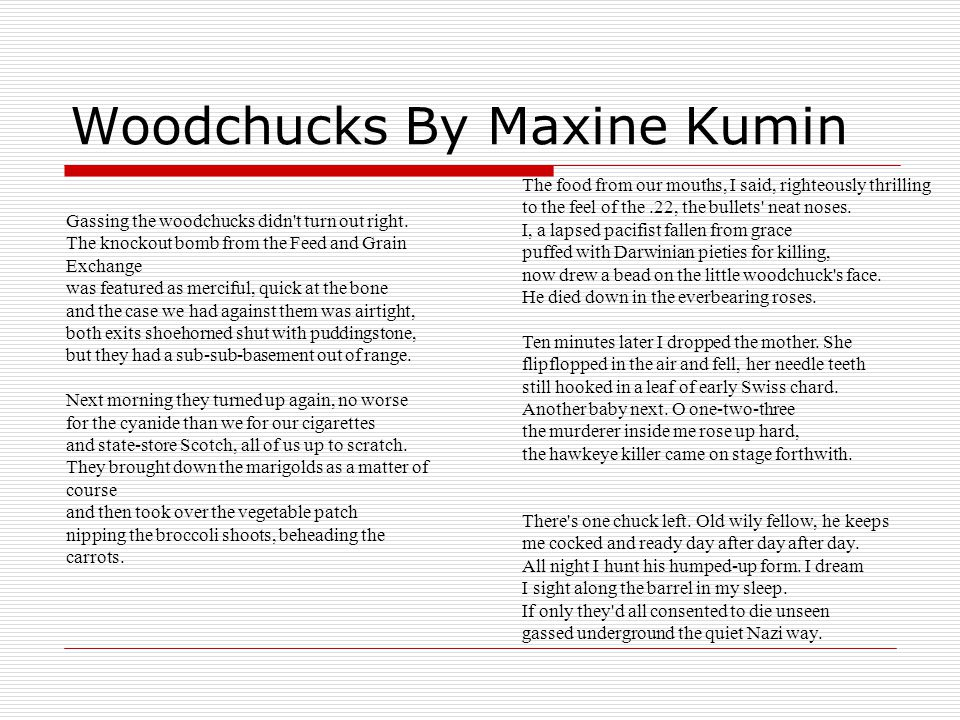 Woodchucks By Maxine Kumin