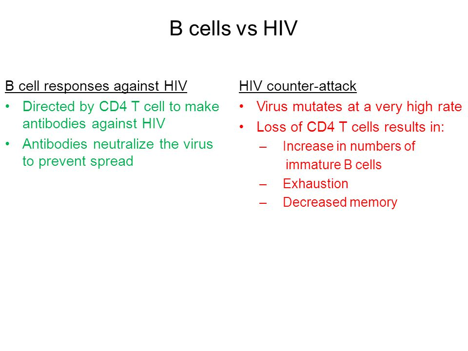 B cells vs HIV B cell responses against HIV