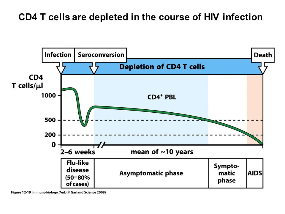 CD4 T cells are depleted in the course of HIV infection