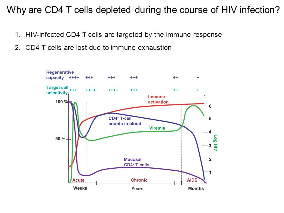 Why are CD4 T cells depleted during the course of HIV infection