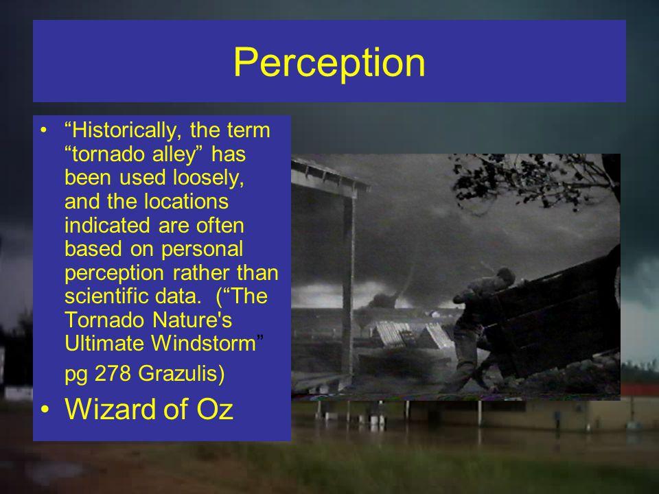 Perception Wizard of Oz