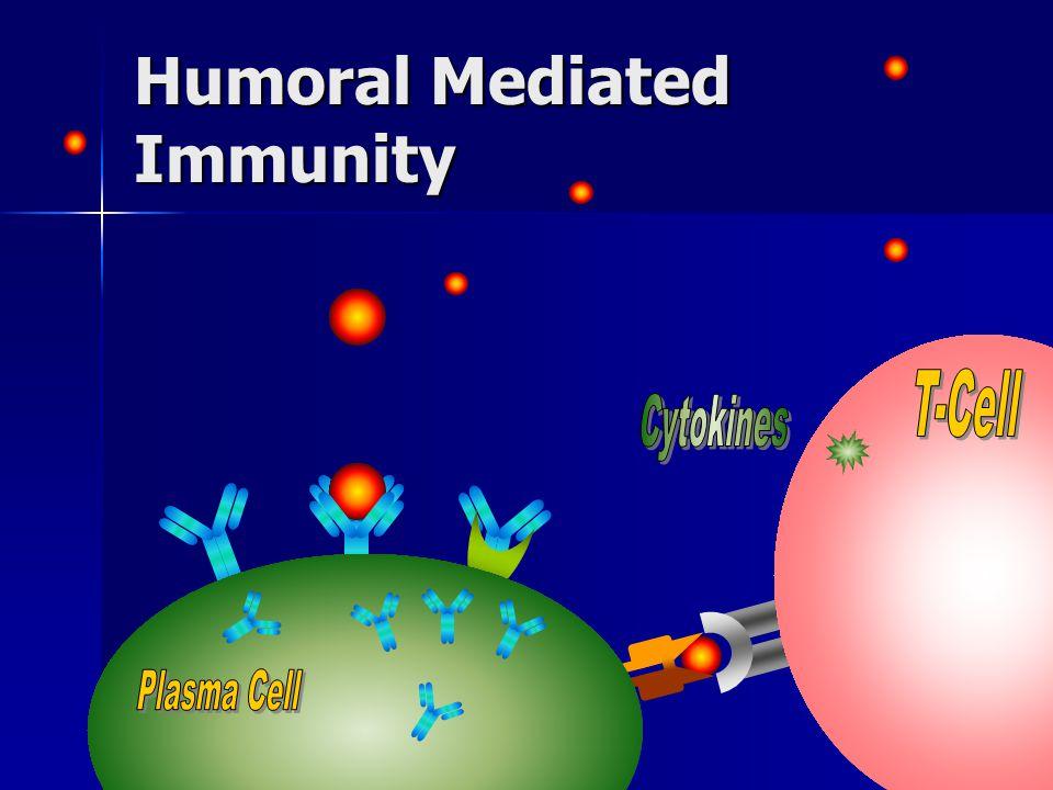 Humoral Mediated Immunity