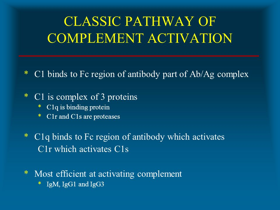 CLASSIC PATHWAY OF COMPLEMENT ACTIVATION