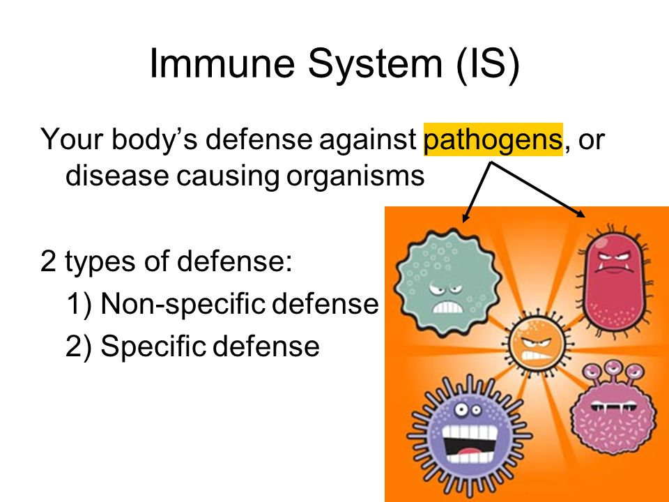 Immune System (IS) Your body's defense against pathogens, or disease causing organisms. 2 types of defense: