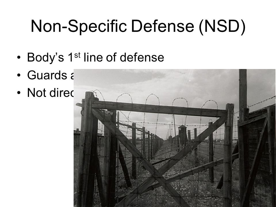 Non-Specific Defense (NSD)