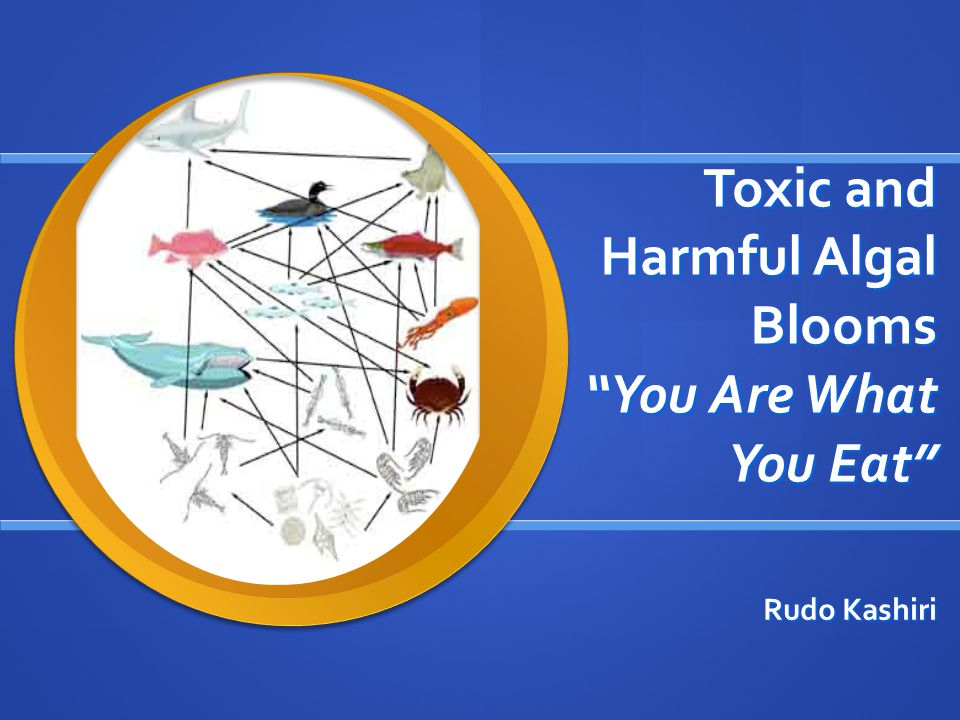 Toxic and Harmful Algal Blooms You Are What You Eat