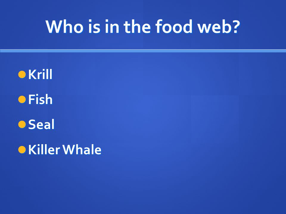 Who is in the food web Krill Fish Seal Killer Whale