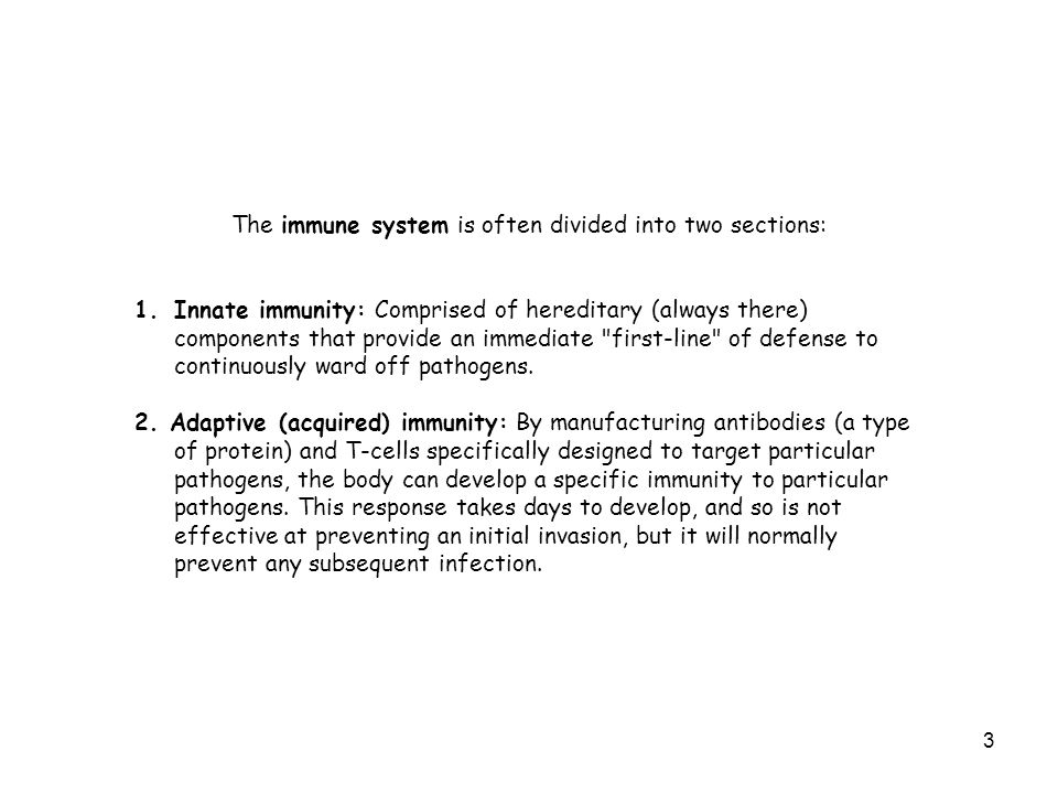 The immune system is often divided into two sections: