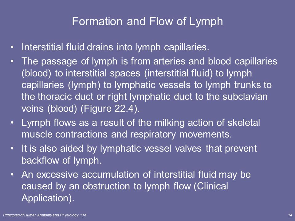 Formation and Flow of Lymph